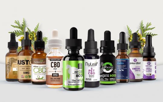 How to make the pets to happily consume CBD?